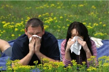 It's The Sneezy Season! Ten Natural Ways to Blow Away Your Allergies!